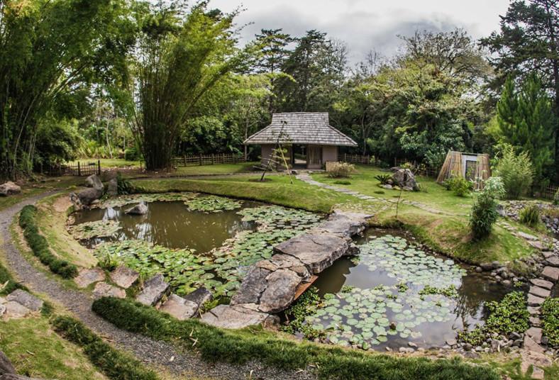 Titicupon titicupon for Jardin japones cursos