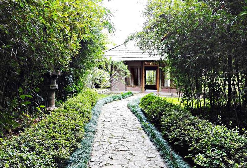 Un d a rodeado de plantas incre bles 2x1 en el jard n for Plantas de un jardin botanico
