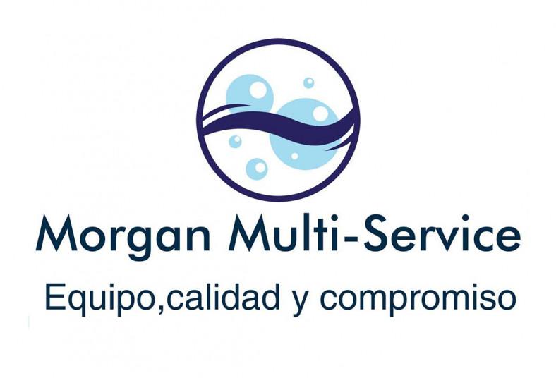 morgan, multi, service, limpieza, vehículo, sedán, 4x4, suv, interior, domicilio