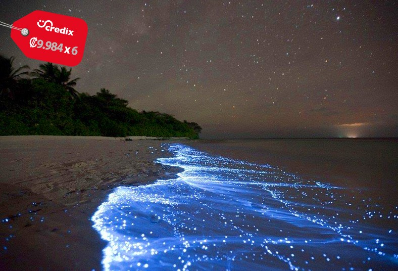 catamarán, alba, tour, bioluminiscencia, desayuno, cenas, delfines, tienda,