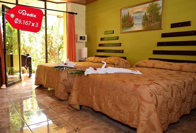 Ara, Ambigua, Lodge, hotel, sarapiquí, turismo, vacaciones, naturaleza, pareja