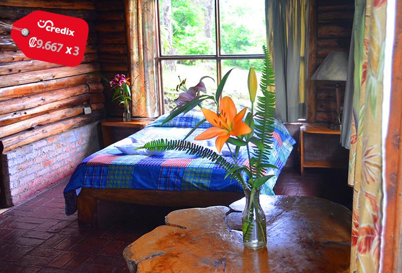 cabañas, restaurante, ardillas, montaña, naturaleza, niños, pareja, desayuno,