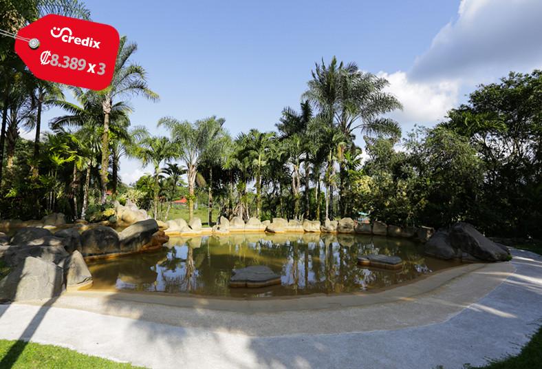 hotel, arenal, paraíso, resort, spa, piscina, restaurante, descanso, coronavirus