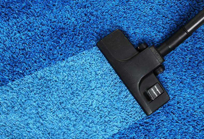 Autoespecialistas, Este, limpieza, profunda, alfombras, máquinas, vapor, ácaros