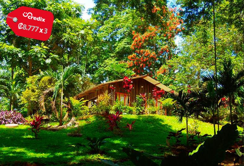 hotel, villas, valle, azul, patio, tours, hospedaje, familia, amigos, naturaleza