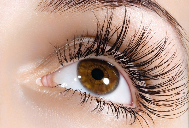 bielece, spa, encrespado, permanente, pelo, pelo, pestañas, mirada, maquillaje,