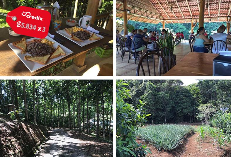 hotel, bosque, piscina, natural, santuario, animales, lapas, desayuno, senderos