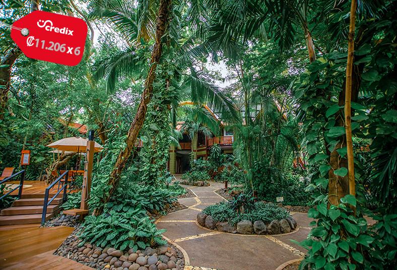 hotel, bosque, mar, playa, hermosa, garden, suite, desayuno, pareja, familia,