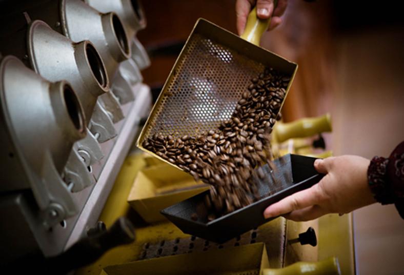 britt, coffee, tour, degustacion, mata, campo, disfrutar, chocolate, café,