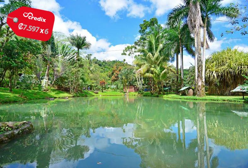 chachagua, rainforest, eco, lodge, desayuno, almuerzo, cena, familia, pareja,