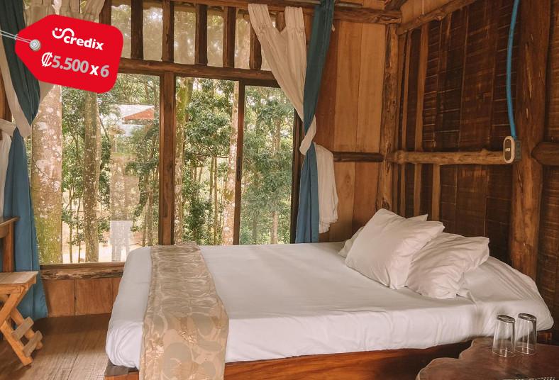 hotel, bosque, hospedaje, piscina, natural, desayuno, pareja, zonas, verdes,