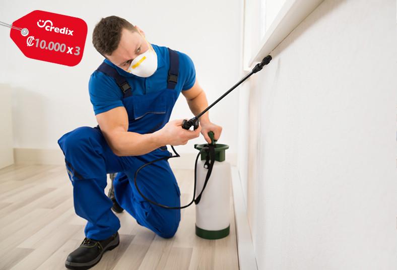 fumigadora, eco, ambiental, fumigación, limpieza, tuberías, plagas, casa, oficin