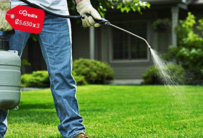 ECO, Fumigadora, BYS, productos, ecológicos, empresas, casas, aspersión, área