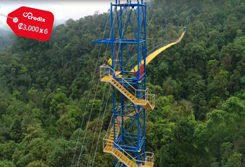 Costa, Rica, Eco, Bungee, salto, caída, sky, swing, sky, bridge, jardín, comida
