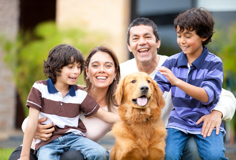 educadogs, k9, perros, clases, adiestramiento, mascota, disciplina, convivencia