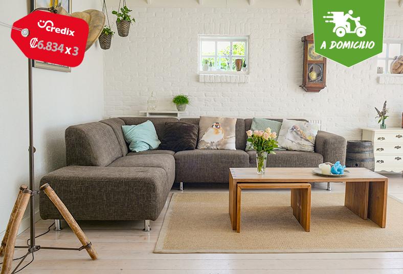 express, clean, limpieza, sillones, sala, plazas, sillas, comedor, ácaros, olor