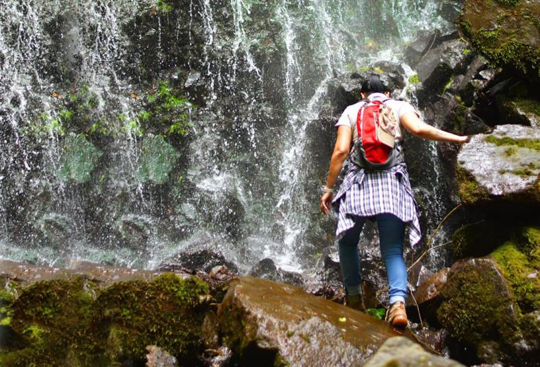 El, Canto, Falls, Reserve, senderos, nacientes, cataratas, naturaleza, reserva,