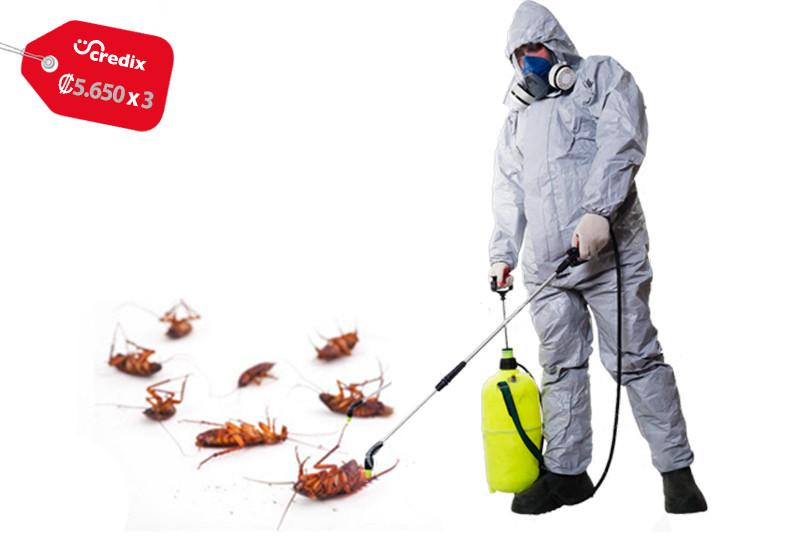 Fumiplag, CR, servicio, fumigación, área, roedores, insectos, aspersión, arañas