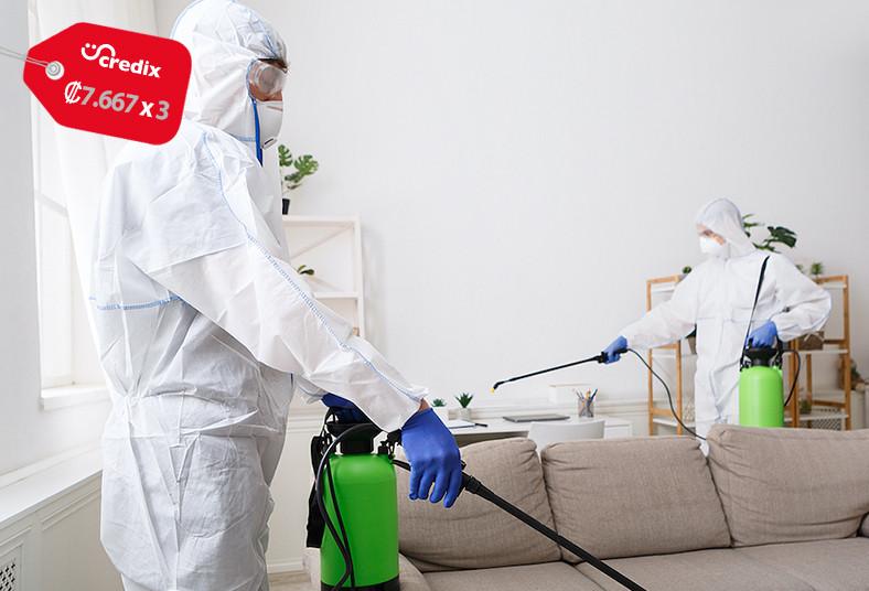 Fumigadora, coronado, servicio, desinfección, vehículo, casa, microorganismos