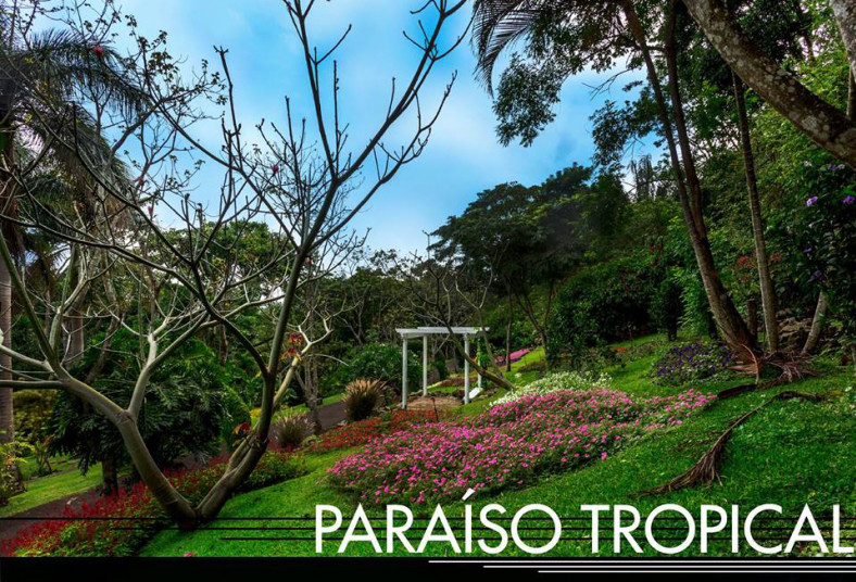 Jardín, Else, Kientzler, talleres, microorganismos, eficientes, floricultor,