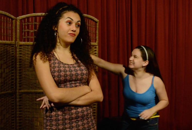 teatro, comedia, sj, obra, teatro, la ligerita, atrás, godínez, risas, familia,