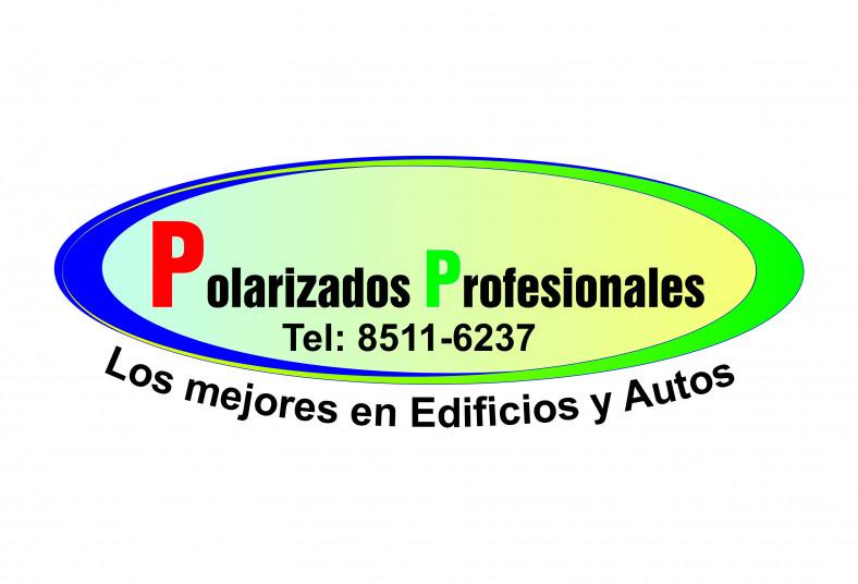 polarizados, seguridad, vehículo, protección, rtv, tono, intermedio, midas,