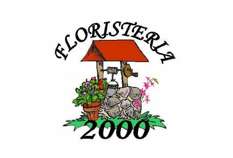 Floristería, 2000, arreglo, floral, clavel, amor, ave, ramo, paraíso, follajes,