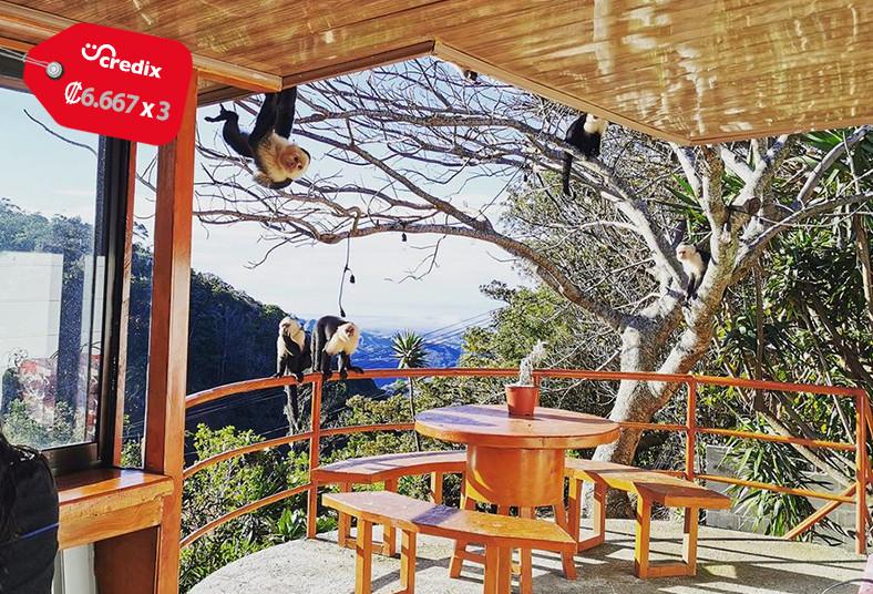 Mora's, Place, B&B, monteverde, hospedaje, desayuno, pareja, naturaleza, bosque