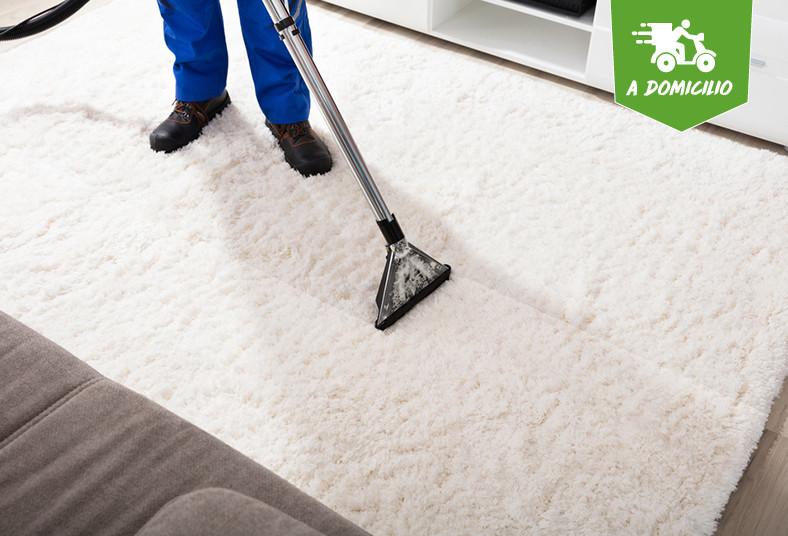 morgan, multi, service, limpieza, alfombras, manchas, inyección, ácaros, olores