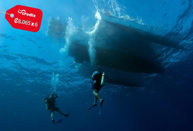 Pacific, Blue, Divers, clase, teórica, práctica, padi, discover, scuba, diving