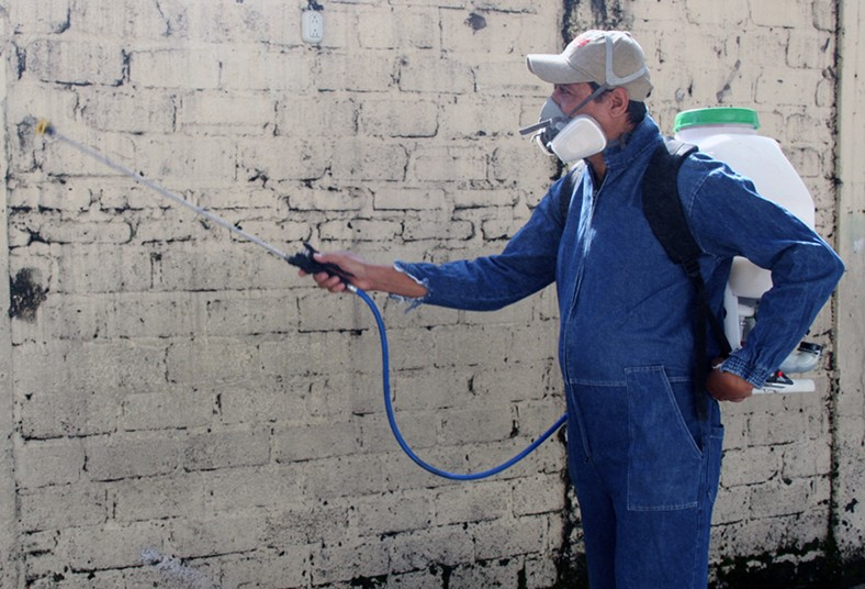 plaguicontrol, servicio, de fumigación, plagas, insectos, rastreros, voladores