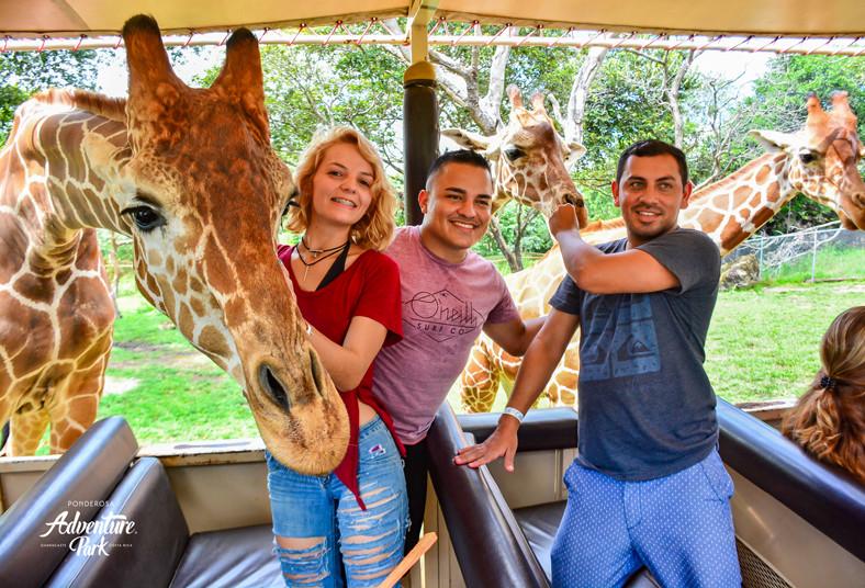 ponderosa, adventure, park, tour, safari, catarata, perla, niños, familia,