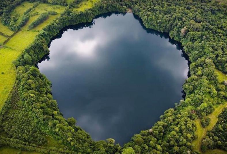 hotel, bosque, laguna, hule, río, cuarto, piscina, almuerzo, instalaciones,
