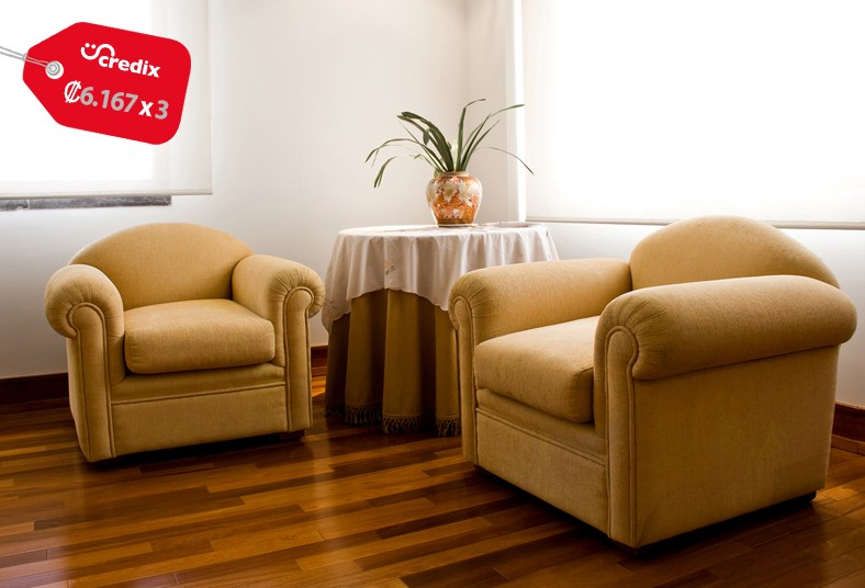 servicios, profesionales, limpieza, randall, rodríguez, sillones, plazas, ácaros