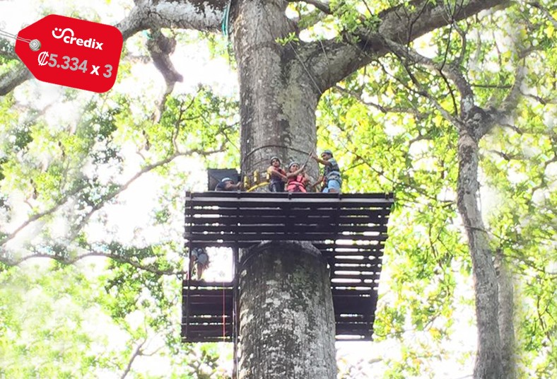 jaco, ropes, tour, canopy, cables, escalada, árbol, altura, surf, aire, niños,