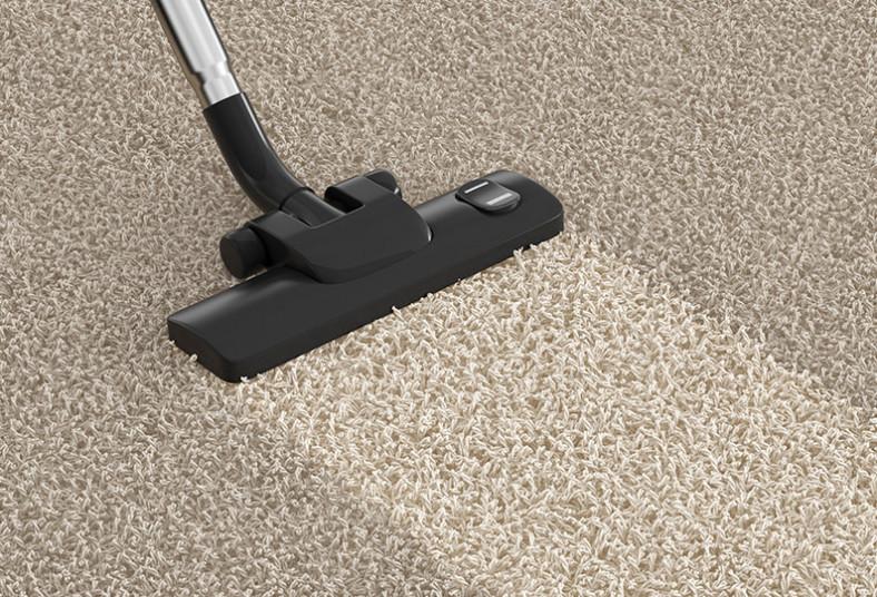 Shiny, Cleaning, limpieza, alfombras, ácaros, malos, olores, secas, casa, hogar
