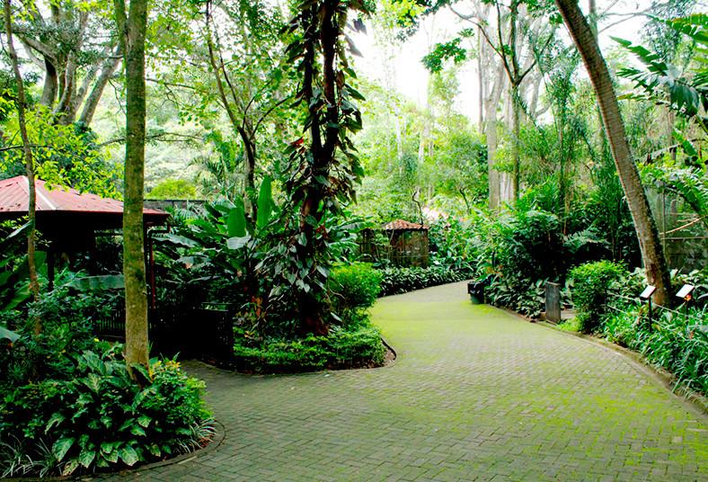 Parque, Zoológico, Jardín, Botánico, Nacional, Simón, Bolívar, especies, laguna,