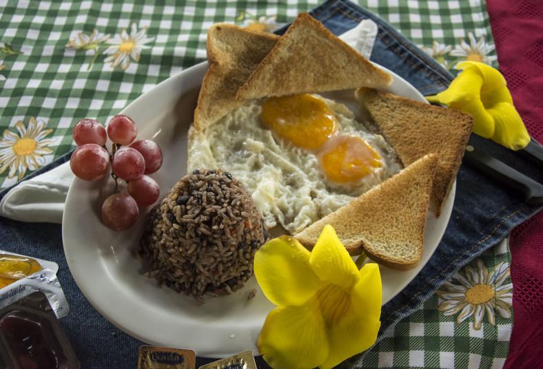 Hotel, Vagabondo, Fortuna, desayuno, estándar, fortuna, familiar, superior,