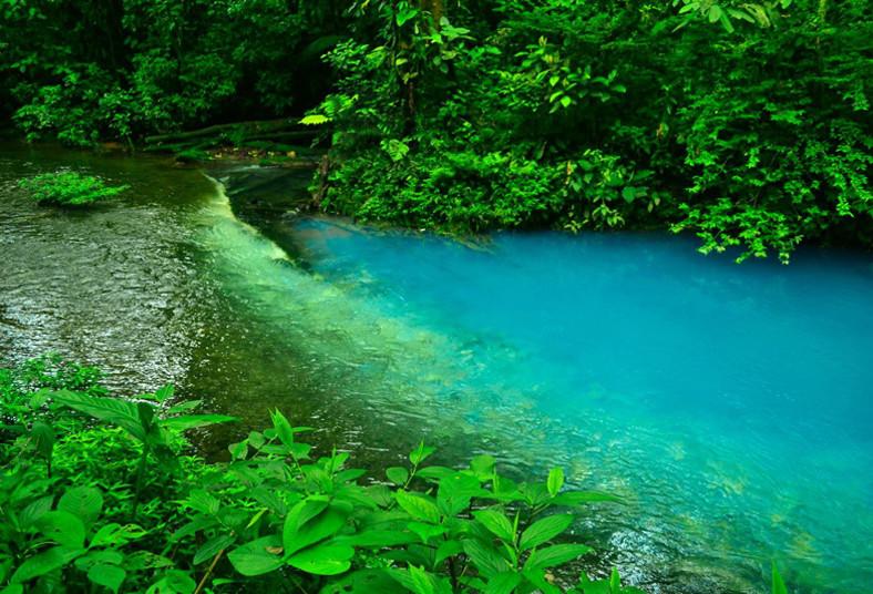 walking, paradise, cr, tour, río, celeste, parque, nacional, volcán, tenorio,