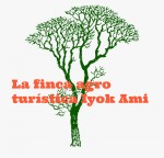 Iyok Ami