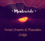 Forest Dreams & Manakin Lodge